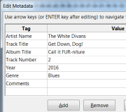 Entering metadata during export